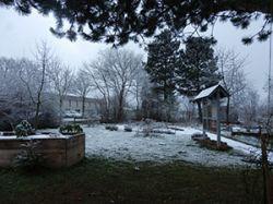 Garten_bei_Frost